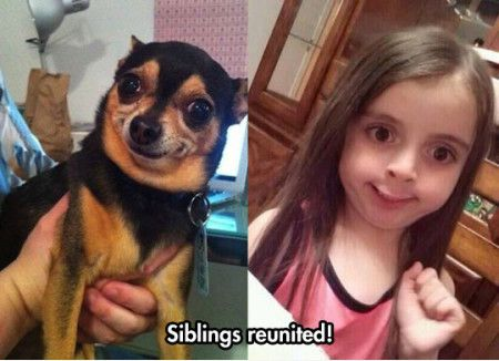Anaview AMS1000-2600 project-funniest_memes_siblings-reunited_12709-jpeg